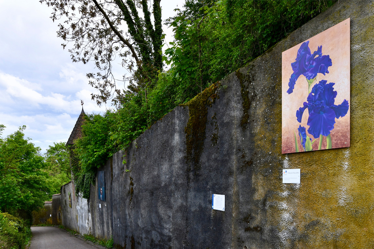 Die Freilichtgalerie in Breisach am Rhein